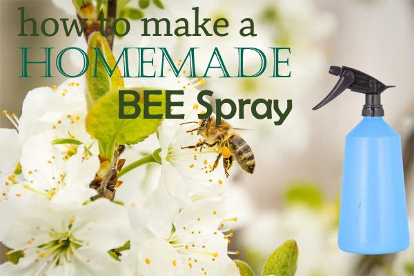 Homemade Wasp And Bee Spray Kill Them Safely